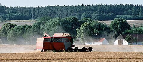 Getreidernte heute: moderne Landmaschinen mit dem Vierseithof im Hintergrund
